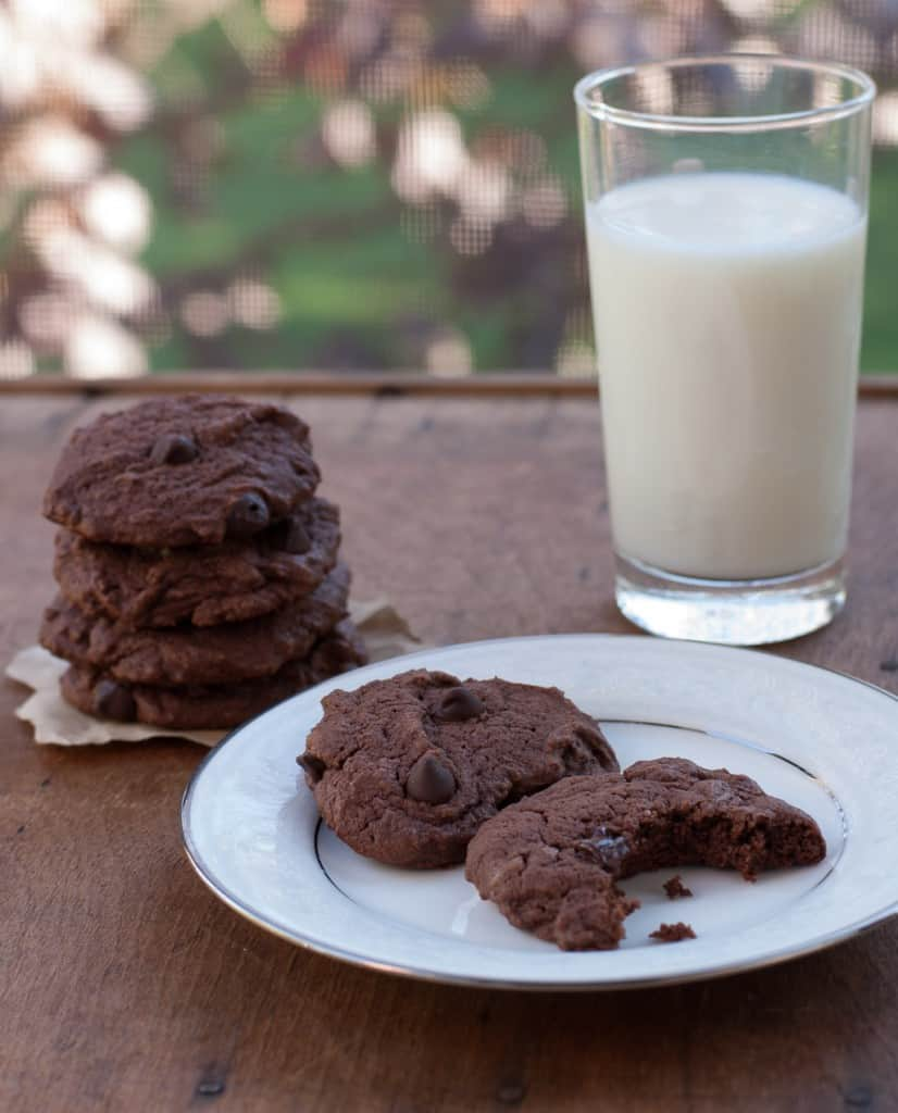 Dark Chocolate Cookies with Dark Chocolate Chips