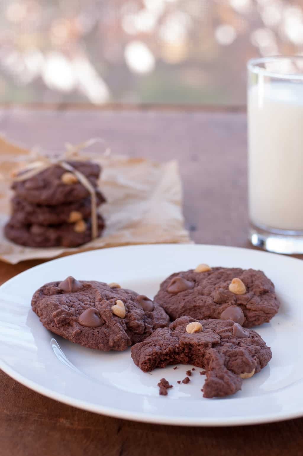 Forget Your Diet Cookies a.k.a. Chocolate Peanut Butter Cookies
