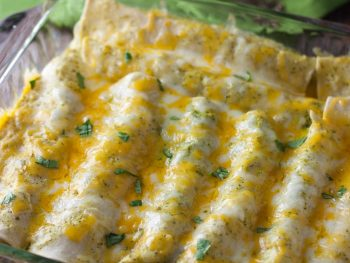 Chicken Enchiladas - a healthy recipe without sacrificing any flavor!