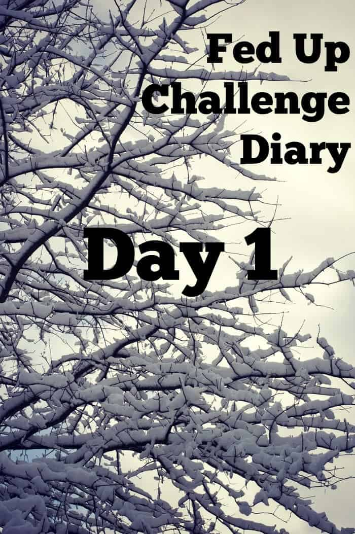 Fed Up Challenge Diary - Day 1 - Here's how I did the first day of the sugar free challenge!